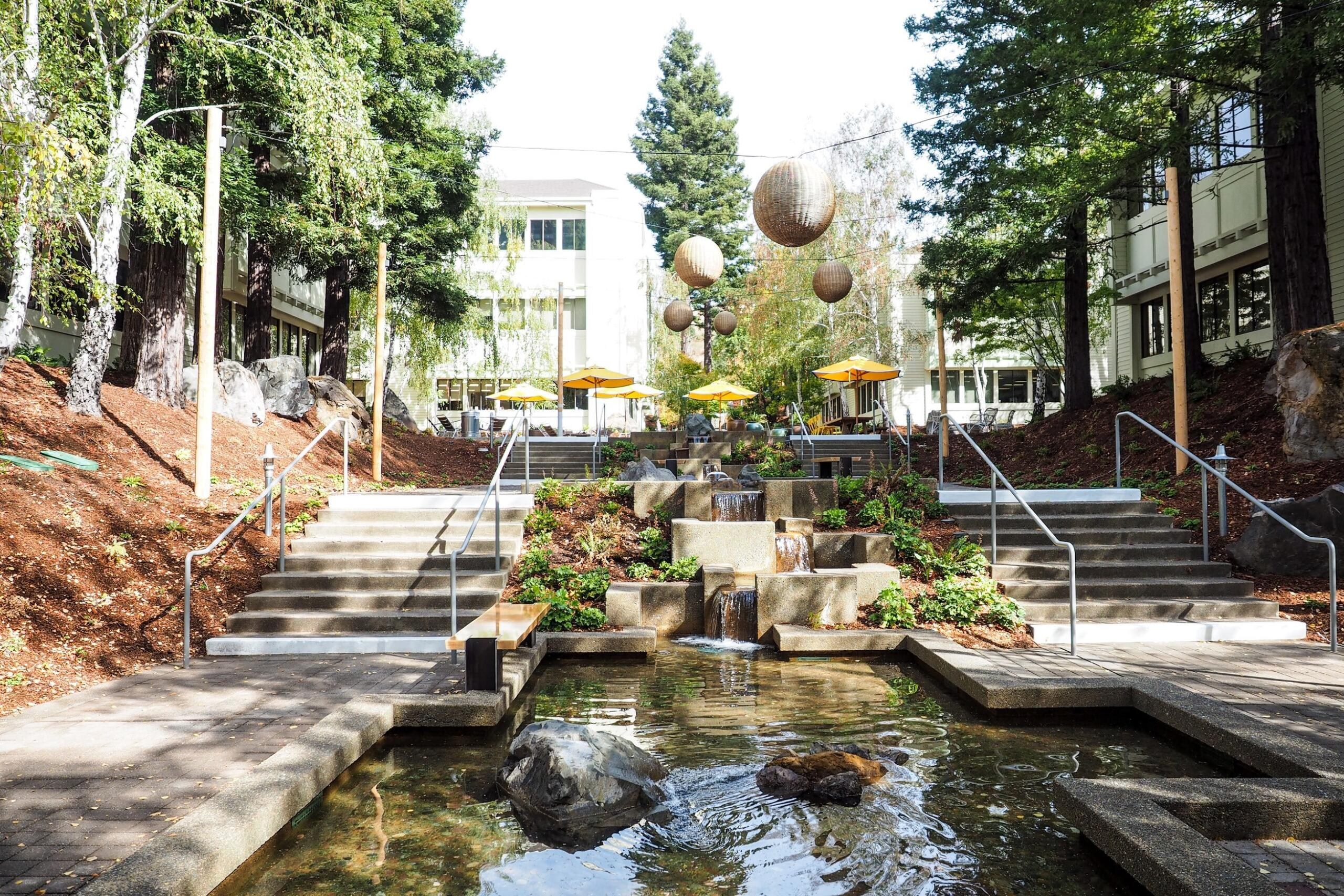 The courtyard at The Exchange at Larkspur Landing with large trees and water cascading into a reflecting pool