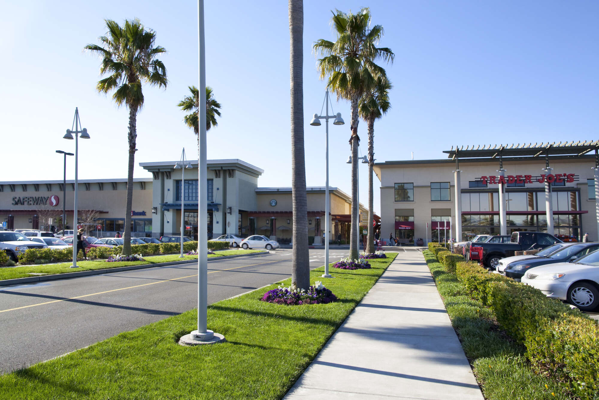 Alameda South Shore Center main entrance, street lined with palm trees, cars parked in lot